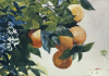 Oranges On A Branch by Winslow Homer