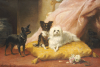 The Little Friends by Euphemie Muraton