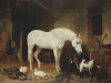 Stable Companions by John Frederick Herring