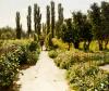 View Of A Garden by Vladimir Donatovich Orlovskii