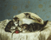 Kittens Up To Mischief by Horatio Couldrey