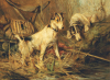 Two Smooth-Haired Fox Terriers by Philip Eustace Stretton