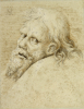 The Head Of A Bearded Man, Turned To The Left Looking Back, 1520 by Albrecht Dürer