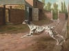 A Dalmation Running In A Stable Yard by Philip Reinagle