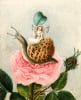 A Fairy Holding A Leaf, Sitting On A Snail Above A Rose by Amelia Jane Murray Lady Oswald