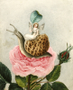 A Fairy Holding A Leaf, Sitting On A Snail Above A Rose by Amelia Jane Murray Lady Oswald