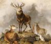 Scene In Braemar - Highland Deer by Sir Edwin Henry Landseer
