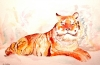 Siberian Tiger by Luisa Gaye Ayre