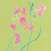 Sweet Pea by Louise Cunningham