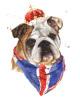 Jubilee British Bulldog by Alison Fennell