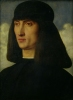 Portrait of a Young Man c.1500 by Giovanni Bellini