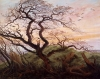 The Tree of Crows 1822 by Caspar David Friedrich