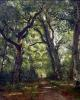 Path in the Forest 1864 by Henri Joseph Constant Dutilleux