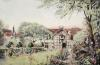 Shakespear's Garden (Restrike Etching) by Anonymous