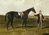 Skirmisher (Restrike Etching) by Charles Hunt