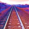 On the Rails by Erin Rafferty