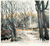 Winter Gold (Restrike Etching) by Jo Barry