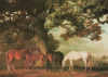 Mares & Foals In A Wooded Landscape by George Stubbs