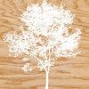 Snowy Tree by Erin Clark