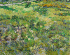 Long Grass with Butterflies by Vincent Van Gogh