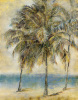Palm Hammock II by Stiles