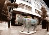 Jermyn Street Cow by Panorama London