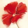 Red Poppy Power IV by Marilyn Robertson