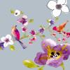 Blossom Birds II by Sandra Jacobs