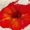 Petite Rouge II by Marilyn Bridges