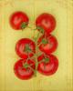 Tomatoes by Keri Bevan