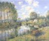 Poplars in Poitevin Marsh by Jean Kevorkian