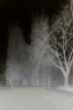 Ghostly Cathedral II by Richard Osbourne