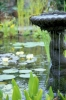 Fountain And Waterlilies by Richard Osbourne