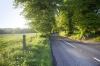 English Country Lane by Richard Osbourne