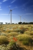 Wind Turbines - Norfolk by Richard Osbourne