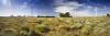 Wind Turbines And Wildflowers, Norfolk by Richard Osbourne