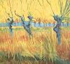 Pollarded Willows and Setting Sun, 1888 by Vincent Van Gogh