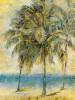 Palm Hammock II by Stiles