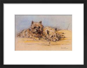 Close Companions by 'Mac' (Lucy Dawson)
