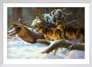 Wolves in Winter by Dick Van Heerde
