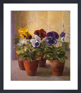 Pansies in Flower Pots by John Morley