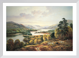 Glen Affric by Wendy Reeves