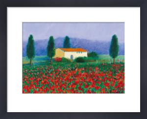 Monteforaue, Tuscany by Hazel Barker