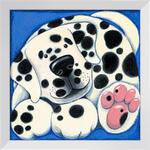 Spotty by Kate Mawdsley
