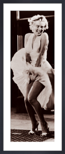 The seven year itch by Anonymous