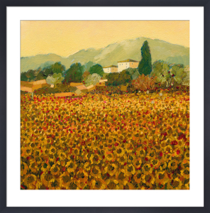 Late Summer, Tuscany by Hazel Barker