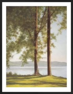 Sunlit Trees II by John Folchi