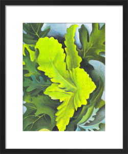 Green Oak Leaves by Georgia O'Keeffe