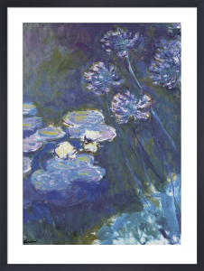 Water Lilies & Agapanthus by Claude Monet