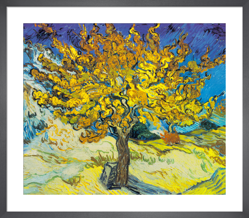 Mulberry Tree 1889 Art Print By Vincent Van Gogh King